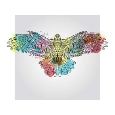 Colourfull Eagle Watercolour Black Framed Wall Art Print