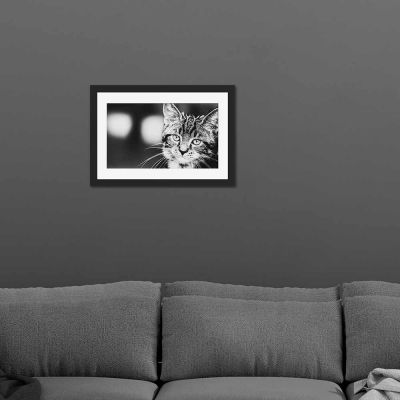 Kitty Cat Black And White Black Framed Wall Art Print