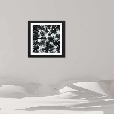 Forrest Sky Black And White Black Framed Wall Art Print