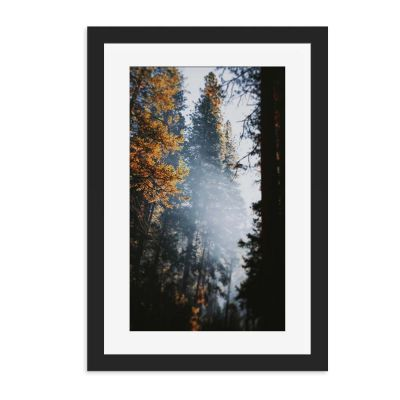 Autumn High Wall Art Print